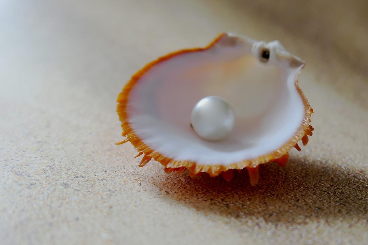 bijoux et perle dans un coquillage